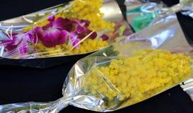 Ramo de flor de la mimosa Fotografía de archivo libre de regalías