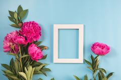 Ramo de flor rosada hermosa de la peonía y de bastidor blanco para el texto en azul en colores pastel dinámico Copie el espacio V Imágenes de archivo libres de regalías