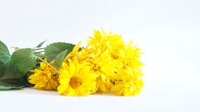 Ramo de flores amarillas Fotografía de archivo