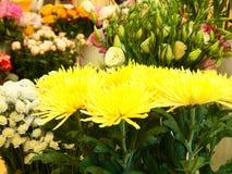 Ramo de flores amarillas con las hojas verdes imágenes de archivo libres de regalías