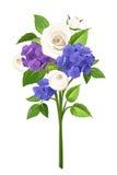 Ramo de flores azules, púrpuras y blancas Ilustración del vector Imágenes de archivo libres de regalías