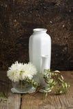 Ramo de flores blancas Imagenes de archivo