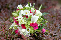 Ramo de flores coloridas en fondo natural Fotografía de archivo