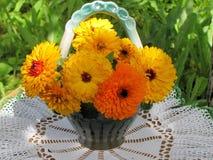 Ramo de flores de la maravilla Fotos de archivo