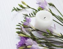 Ramo de flores de las fresias Imagen de archivo libre de regalías