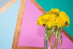 Ramo de flores del diente de le?n del taraxacum en un florero de cristal en un fondo colorido Copie el espacio ilustración del vector