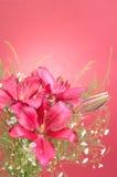 Ramo de flores del lirio stock de ilustración