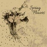 Ramo de flores del resorte Fotografía de archivo