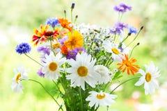 Ramo de flores del verano imagen de archivo libre de regalías