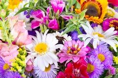 Ramo de flores del verano como fondo Fotos de archivo libres de regalías