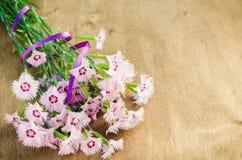 Ramo de flores delicadas Fotos de archivo libres de regalías