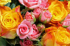 Ramo de flores frescas del verano Imagen de archivo