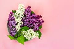 Ramo de flores púrpuras y blancas de la lila en el fondo rosado coralino Copie el espacio Visi?n superior Fondo del verano rom?nt imagenes de archivo