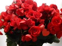 Ramo de flores rojas con el corazón en él Foto de archivo libre de regalías