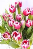 Ramo de flores rosadas Fotografía de archivo libre de regalías