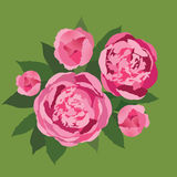 Ramo de flores rosadas apacibles Imagen de archivo