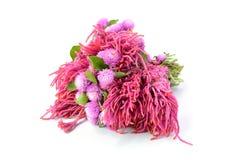 Ramo de flores rosadas en el fondo blanco Fotos de archivo