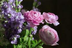 Ramo de flores rosadas y púrpuras foto de archivo
