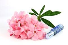 Ramo de flores rosas claras y de botellas de perfume azules. Fotografía de archivo