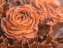 Ramo de flores secas en el fondo de madera, flores secas de las rosas fotografía de archivo libre de regalías