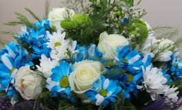 Ramo de flores una composición de rosas y de manzanillas Fondo para la postal Foto de archivo libre de regalías