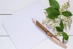Ramo de florescência da cereja de pássaro em um fundo de madeira branco Fotos de Stock Royalty Free