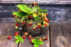 Ramo de fresas salvajes en fondo de madera resistido rústico Fotografía de archivo