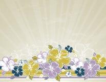 Ramo de hibisco, vector Foto de archivo