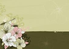 Ramo de hibisco, vector Fotografía de archivo libre de regalías