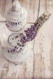 Ramo de hierbas del pulegium del mentha Imágenes de archivo libres de regalías