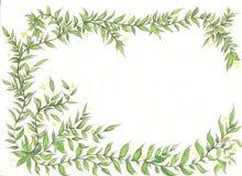 Ramo de hoja, Imagen de archivo libre de regalías