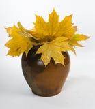 Ramo de hojas de otoño en un jarro de cerámica viejo Imagen de archivo libre de regalías