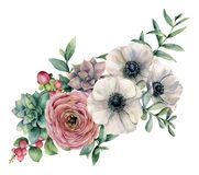 Ramo de la acuarela con el succulent, el ranúnculo y la anémona Flores pintadas a mano, hojas del eucaliptus y rama suculenta stock de ilustración