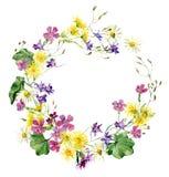 Ramo de la acuarela de flores coloridas salvajes imágenes de archivo libres de regalías