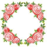Ramo de la acuarela de la guirnalda del capítulo de tres rosas en un fondo blanco del Rhombus stock de ilustración