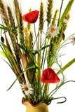 Ramo de la amapola de las flores salvajes Foto de archivo