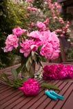 Ramo de la flor de peonía Foto de archivo libre de regalías