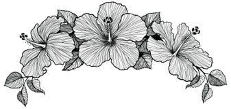 Ramo de la flor de tres hibiscos stock de ilustración