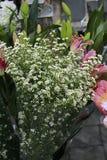 Ramo de la flor del cortador Imagen de archivo libre de regalías