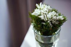 Ramo de la flor del snowdrop del día de fiesta de la primavera en un florero de cristal en casa imágenes de archivo libres de regalías