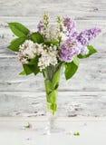 Ramo de la lila en florero imagen de archivo libre de regalías