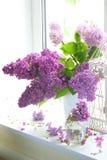 Ramo de la lila en un florero contra una ventana Imagen de archivo libre de regalías
