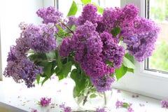 Ramo de la lila en un florero transparente contra una ventana Fotos de archivo