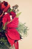Ramo de la Navidad Fotos de archivo libres de regalías