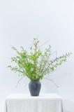 Ramo de la primavera con las ramitas verdes Imágenes de archivo libres de regalías