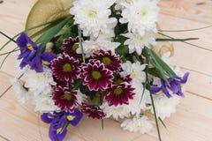 Ramo de la primavera de flores con los crisantemos Imagen de archivo