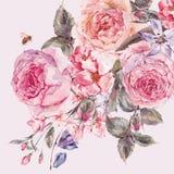 Ramo de la primavera de la acuarela con la cereza floreciente y las rosas inglesas Imagen de archivo libre de regalías