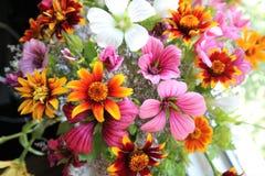 Ramo de la primavera de wildflowers foto de archivo