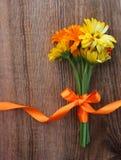 Ramo de las flores del calendula con la cinta en fondo de madera Fotos de archivo libres de regalías