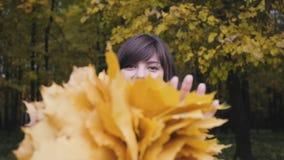 Ramo de las hojas amarillas Muchacha del otoño que camina en parque de la ciudad Retrato de la mujer joven preciosa y hermosa fel almacen de video